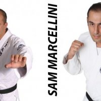 Marcellini's Martial Arts Academy